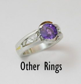 7-other-rings-web